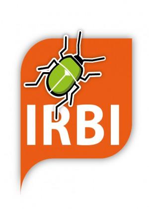 Irbi (Iniciativa de Recerca de la Biodiversitat de les Illes)