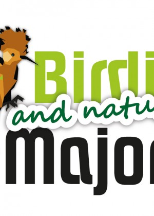Logotipo y web birdingmajorca.com